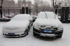 7-Snowy-Cars