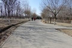 3-First-Park-2