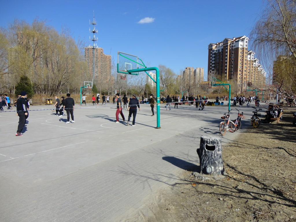 a9-Basketball-Courts
