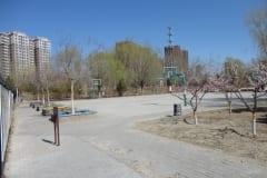 3-Greening-of-the-Park